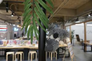 オーストラリア森林火災への復興支援 チャリティーワークショップ開始