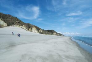 21世紀には日本の6割の砂浜が消滅!? 重大な環境危機に直面している砂浜問題